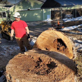 tree care services centennial co, tree care services englewood co