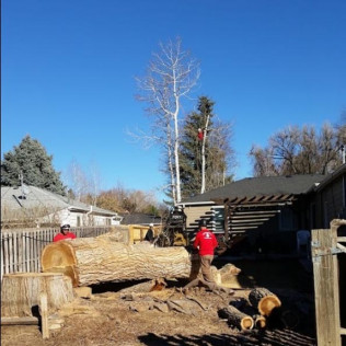 tree removal services englewood co, tree removal services centennial co